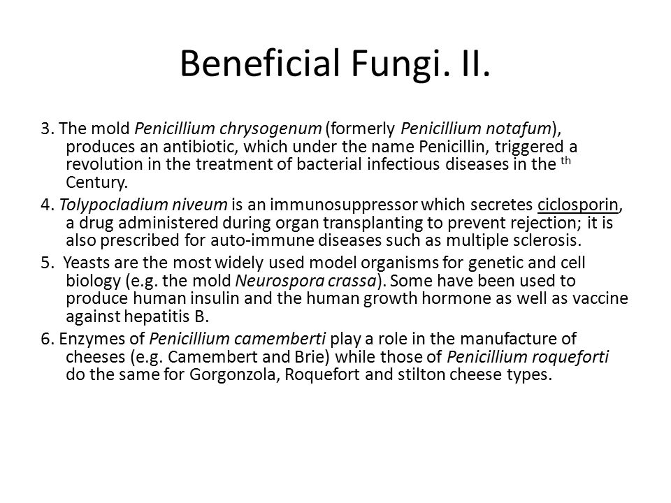 Beneficial Fungi. II.