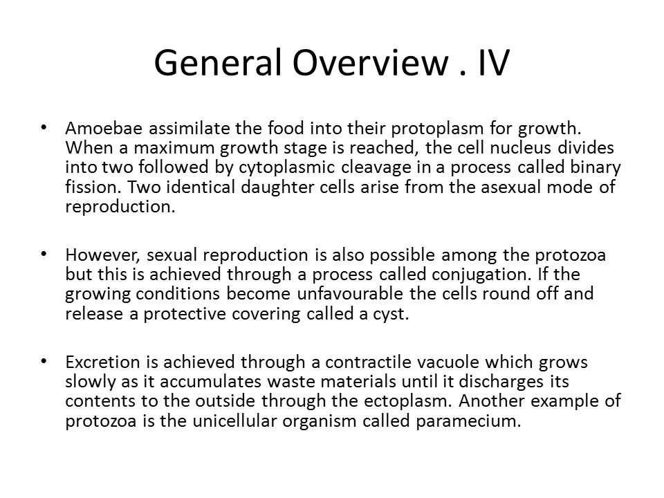 General Overview . IV