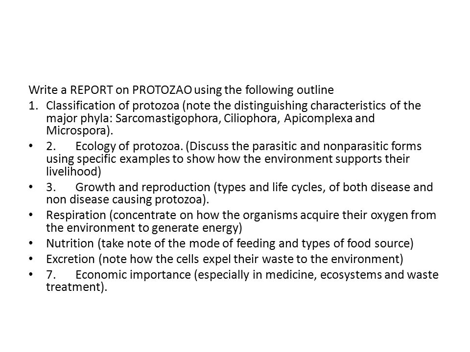Write a REPORT on PROTOZAO using the following outline