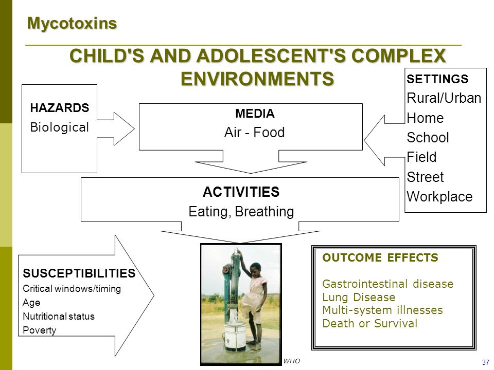 CHILD S AND ADOLESCENT S COMPLEX ENVIRONMENTS