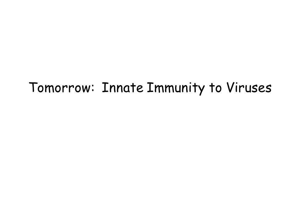 Tomorrow: Innate Immunity to Viruses