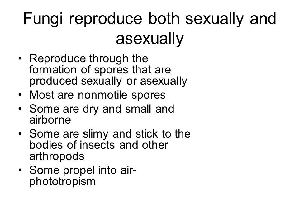Fungi reproduce both sexually and asexually