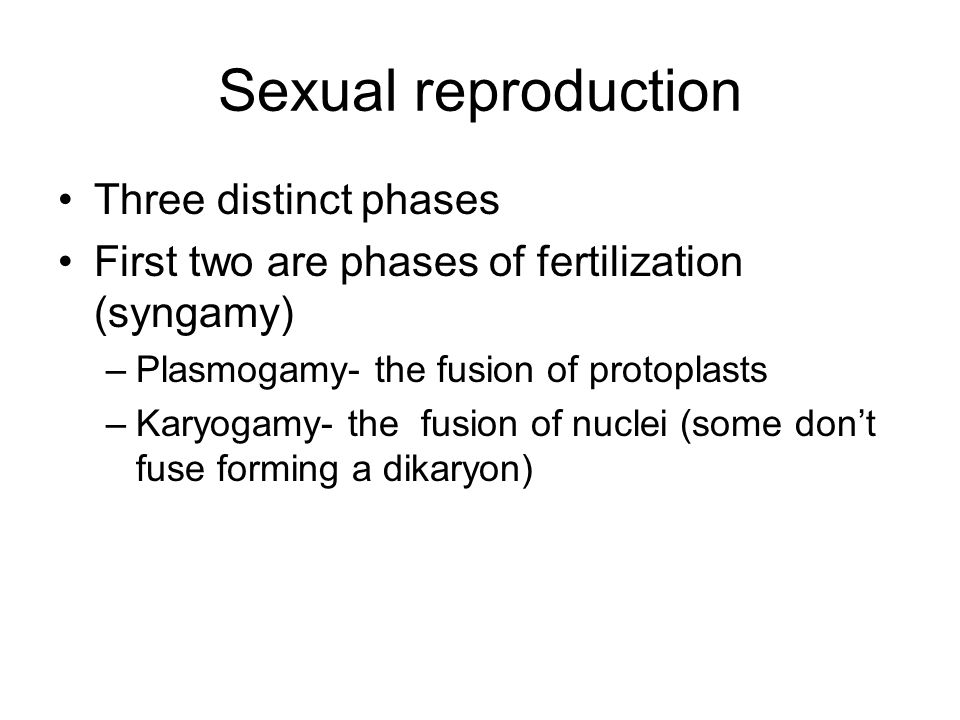 Sexual reproduction Three distinct phases