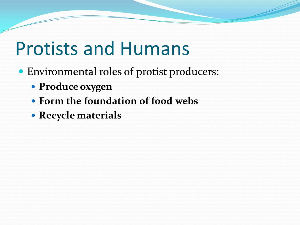 Protists and Humans Environmental roles of protist producers: