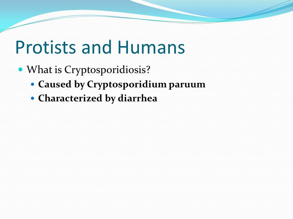 Protists and Humans What is Cryptosporidiosis