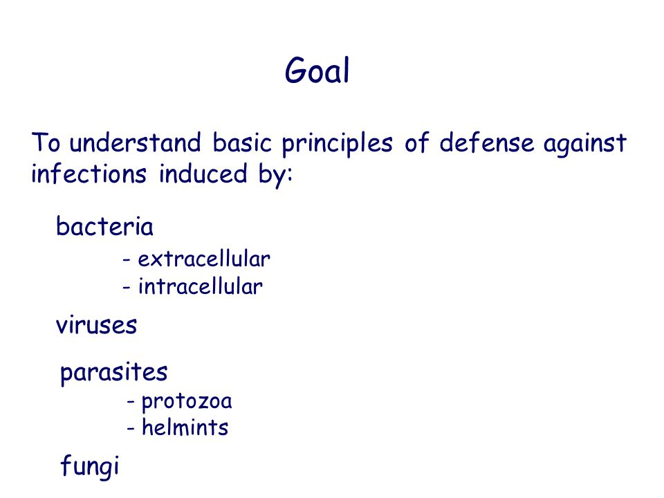 Goal To understand basic principles of defense against