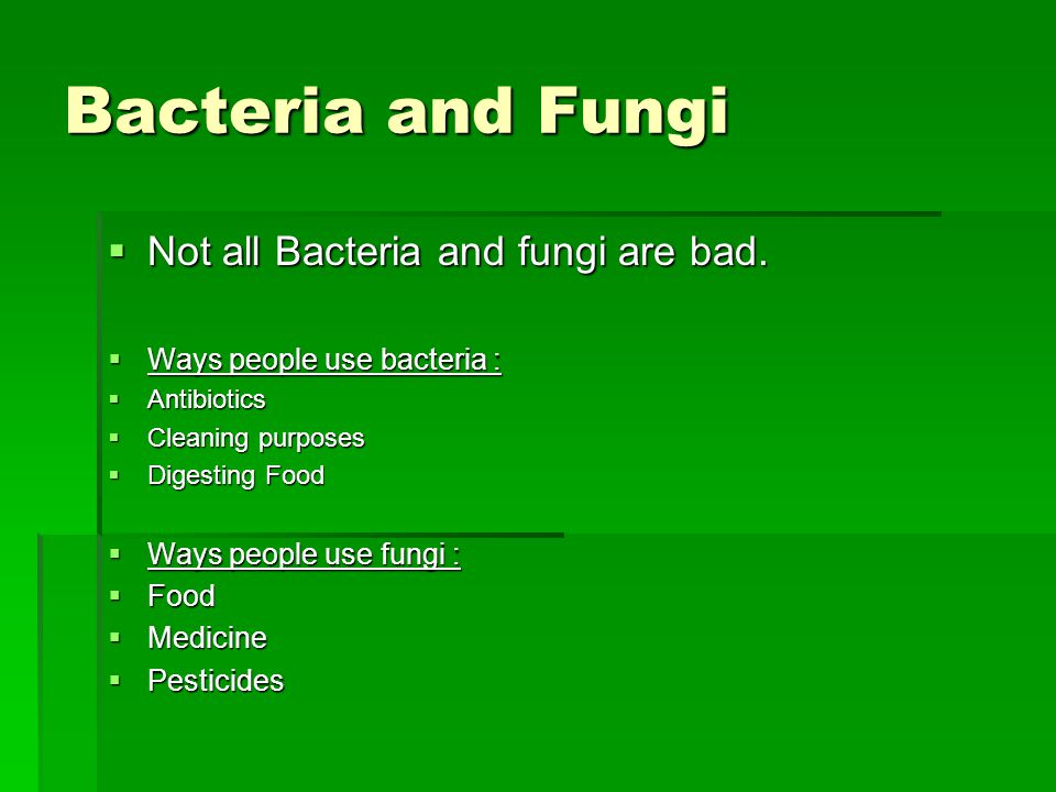 Bacteria and Fungi Not all Bacteria and fungi are bad.