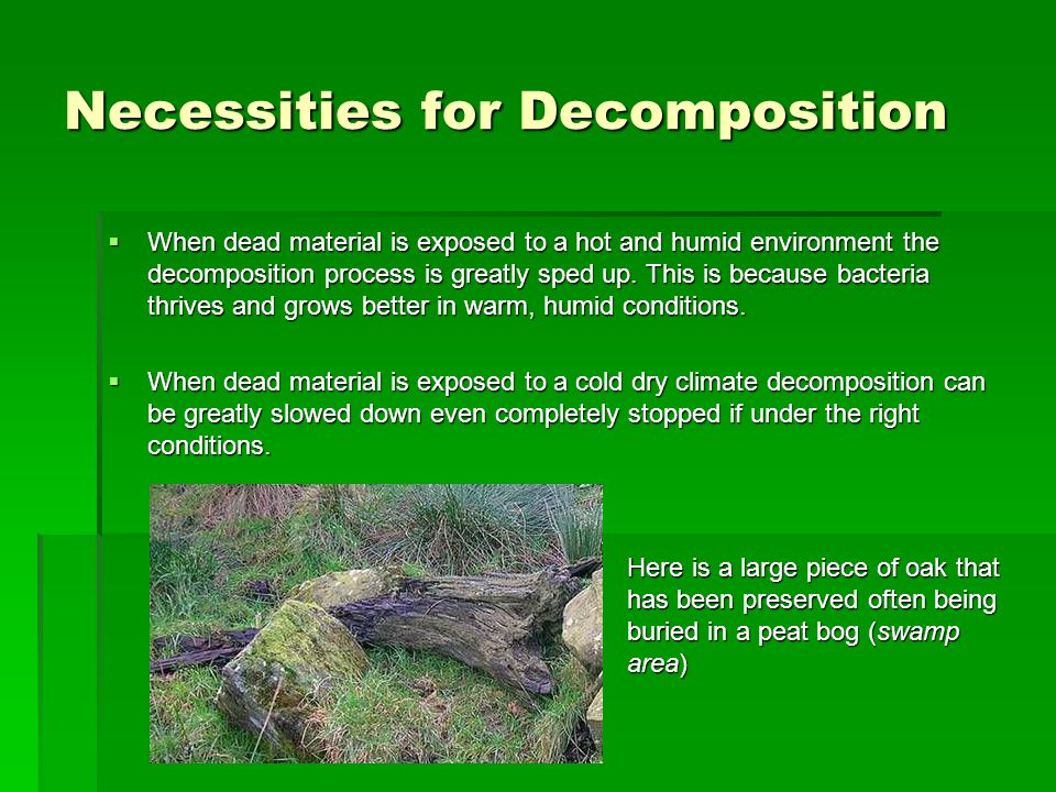 Necessities for Decomposition