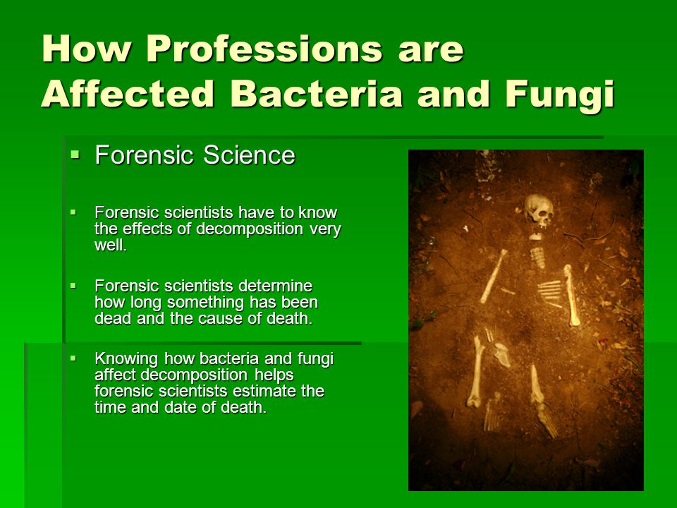 How Professions are Affected Bacteria and Fungi
