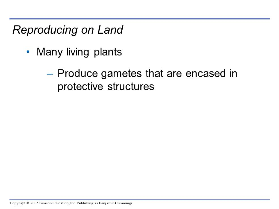 Reproducing on Land Many living plants