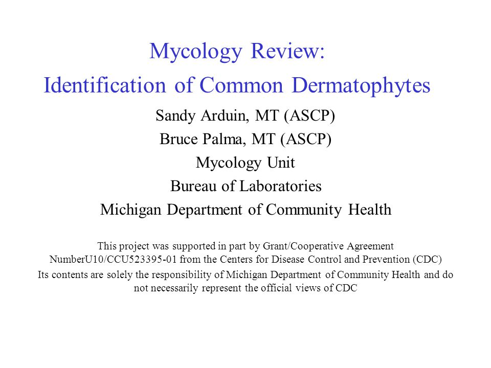 Mycology Review: Identification of Common Dermatophytes