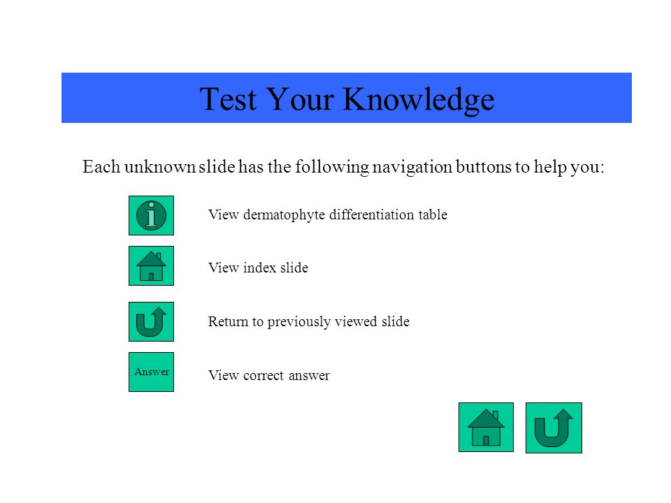 Each unknown slide has the following navigation buttons to help you: