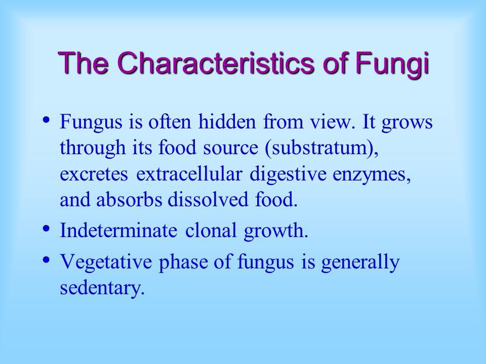 The Characteristics of Fungi