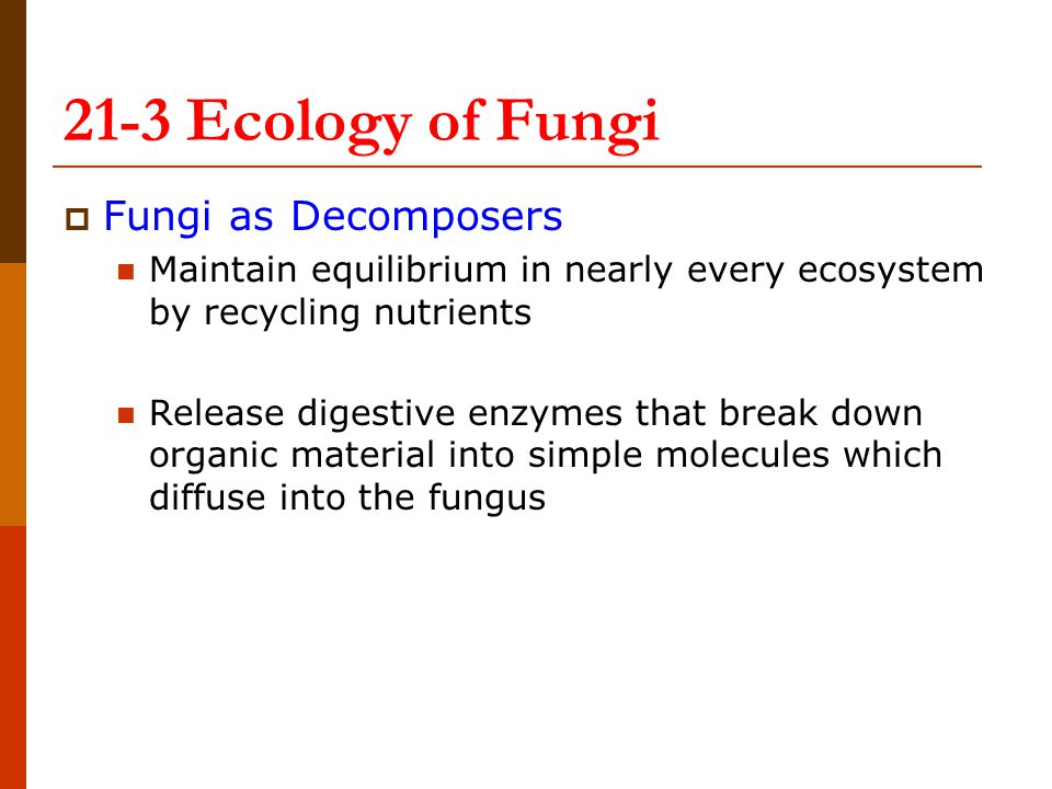 21-3 Ecology of Fungi Fungi as Decomposers