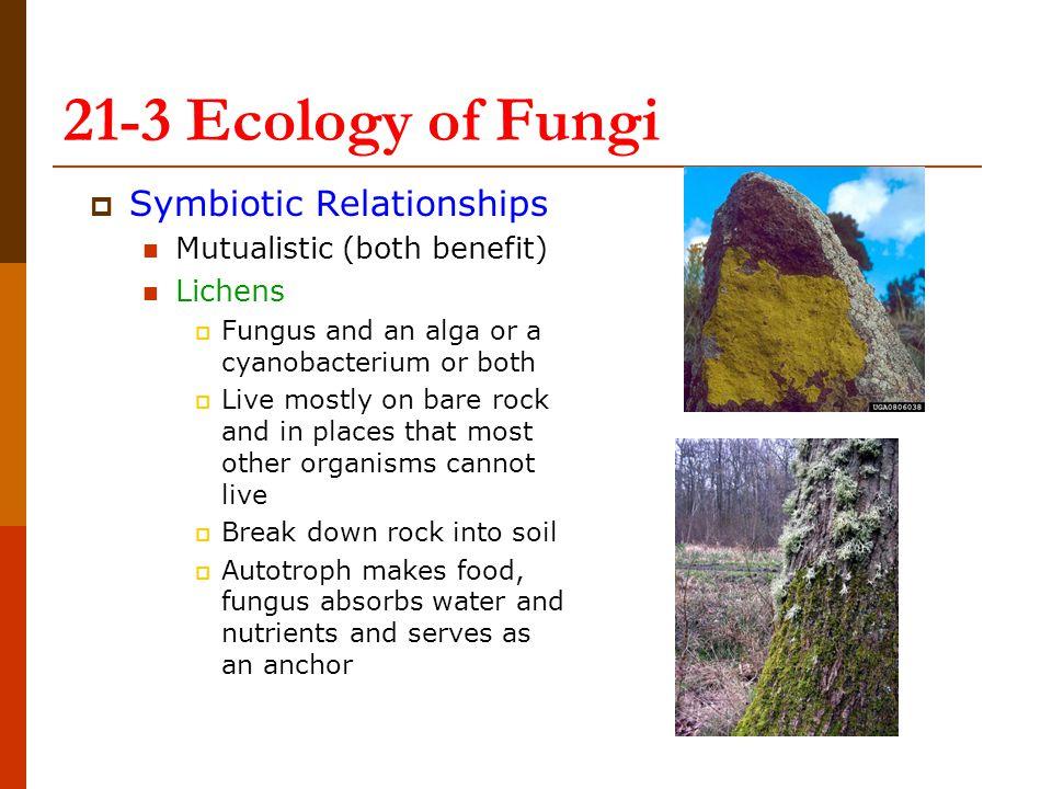 21-3 Ecology of Fungi Symbiotic Relationships