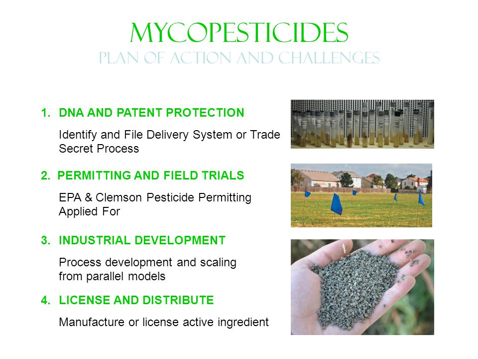 MYCOPESTICIDES PLAN OF ACTION AND CHALLENGES