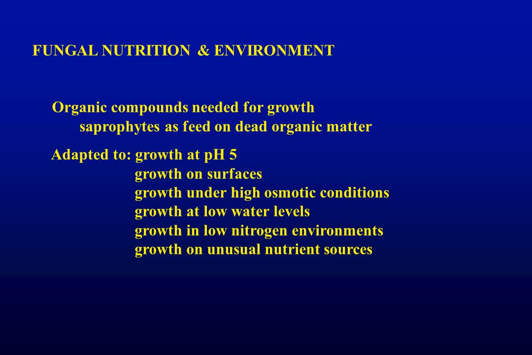 FUNGAL NUTRITION & ENVIRONMENT
