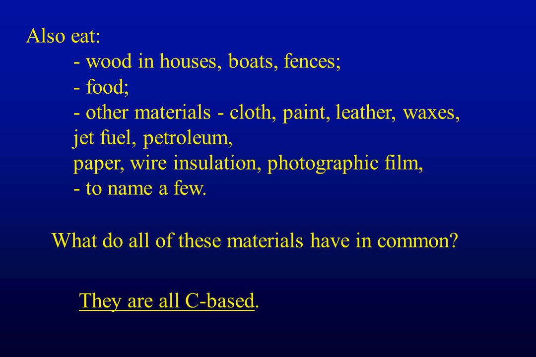 Also eat: - wood in houses, boats, fences; - food; - other materials - cloth, paint, leather, waxes,