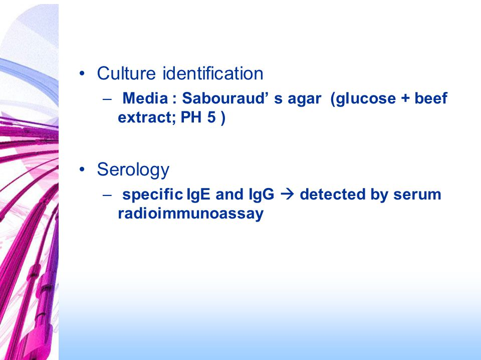 Culture identification