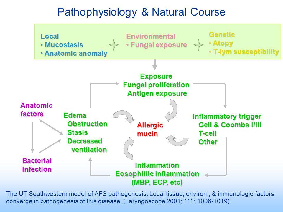 Eosophillic inflammation
