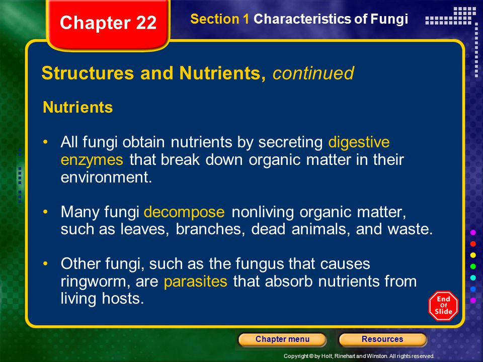Structures and Nutrients, continued