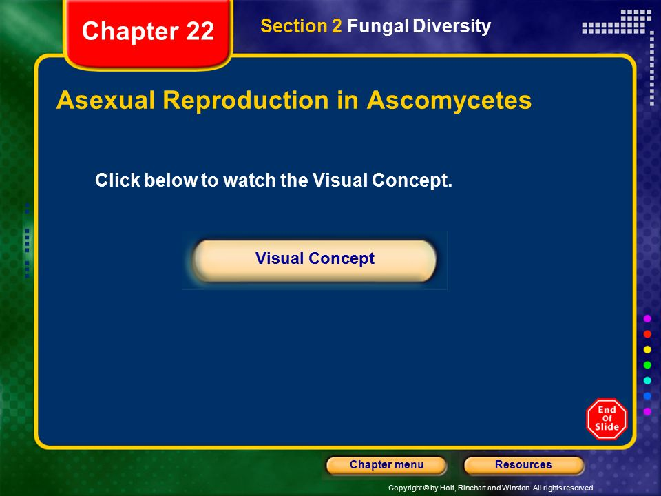 Asexual Reproduction in Ascomycetes