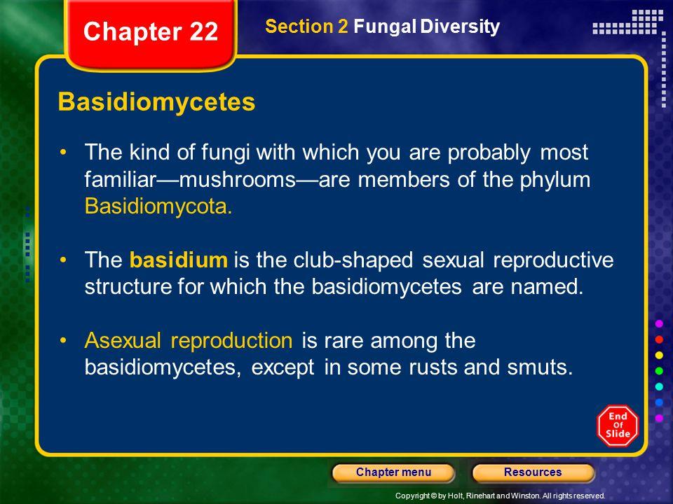 Chapter 22 Basidiomycetes
