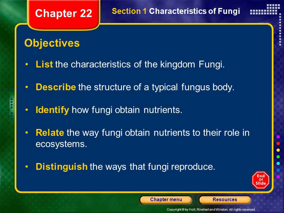 Chapter 22 Objectives List the characteristics of the kingdom Fungi.