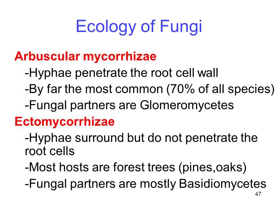 Ecology of Fungi Arbuscular mycorrhizae