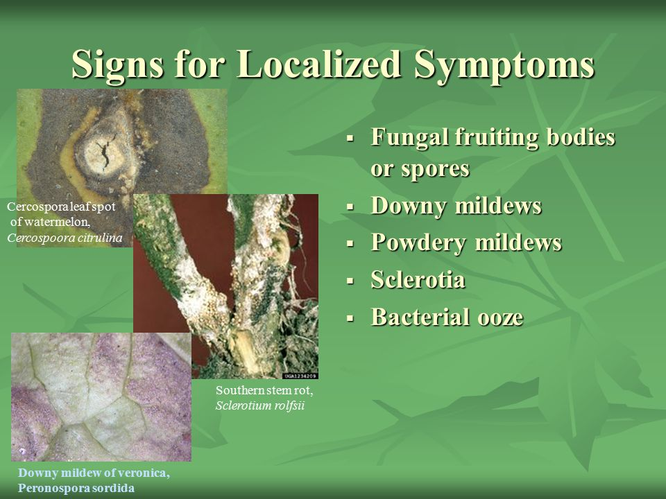 Signs for Localized Symptoms