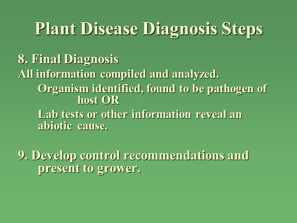 Plant Disease Diagnosis Steps