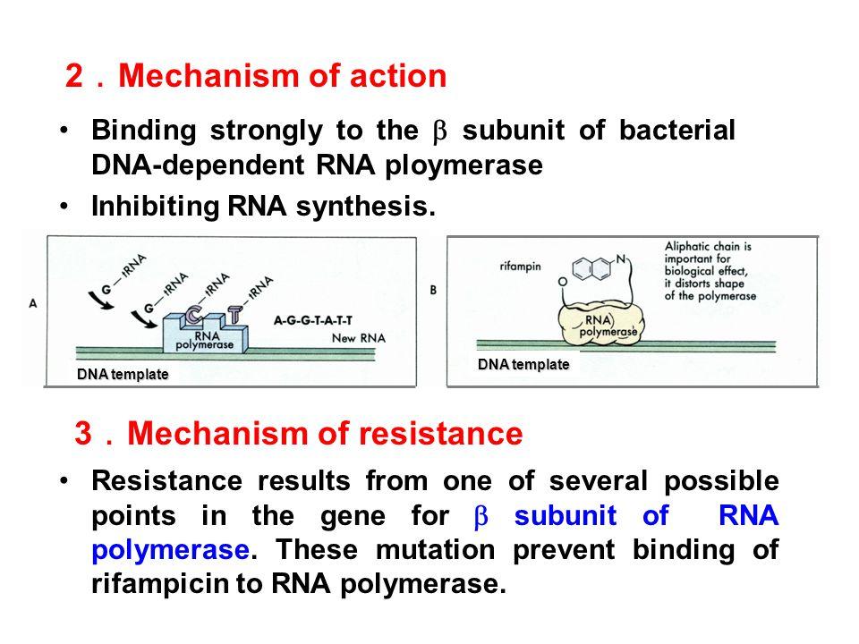3.Mechanism of resistance