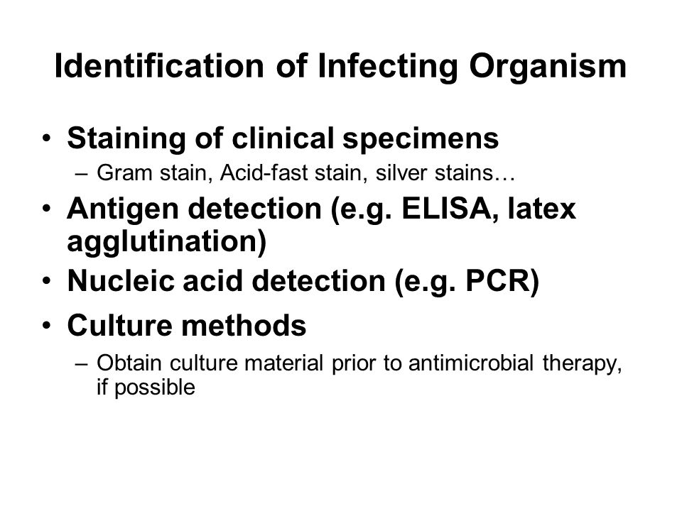 Identification of Infecting Organism