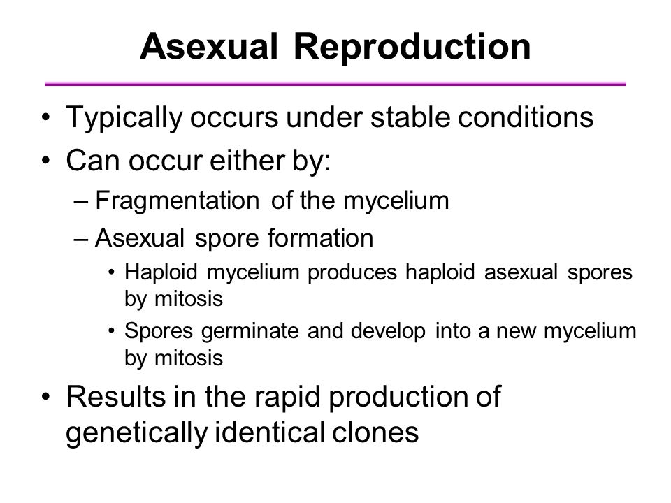 Asexual Reproduction Typically occurs under stable conditions