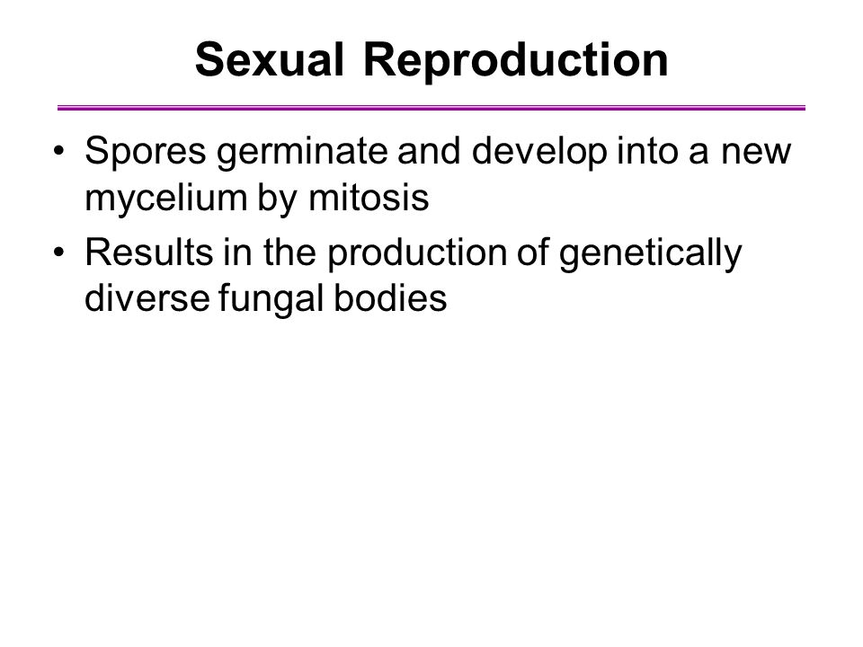Sexual Reproduction Spores germinate and develop into a new mycelium by mitosis.