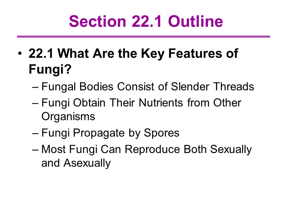Section 22.1 Outline 22.1 What Are the Key Features of Fungi
