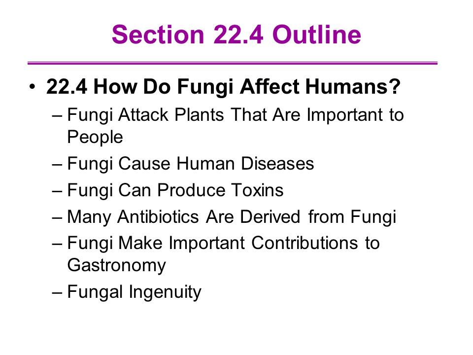 Section 22.4 Outline 22.4 How Do Fungi Affect Humans