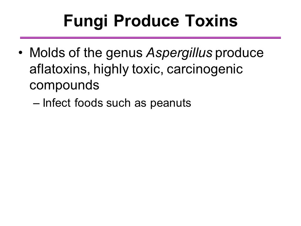 Fungi Produce Toxins Molds of the genus Aspergillus produce aflatoxins, highly toxic, carcinogenic compounds.