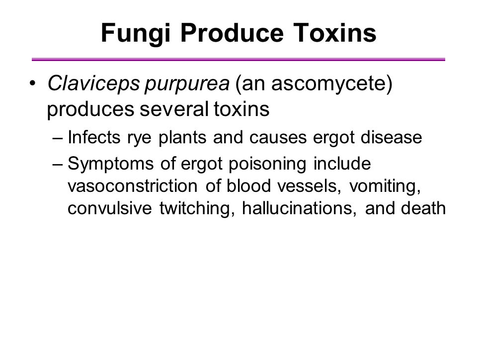 Fungi Produce Toxins Claviceps purpurea (an ascomycete) produces several toxins. Infects rye plants and causes ergot disease.