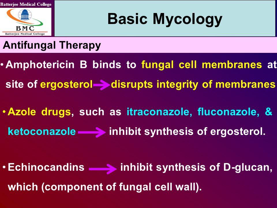 Basic Mycology Antifungal Therapy