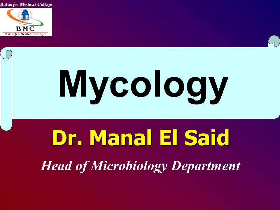 Head of Microbiology Department