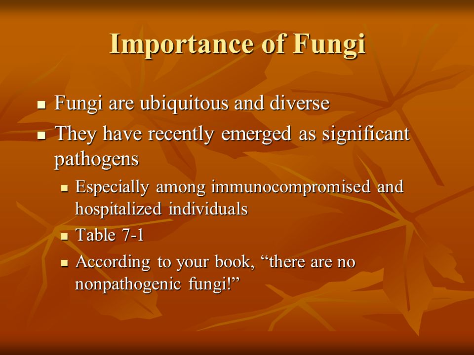 Importance of Fungi Fungi are ubiquitous and diverse