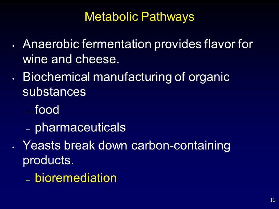 Metabolic Pathways Anaerobic fermentation provides flavor for wine and cheese. Biochemical manufacturing of organic substances.