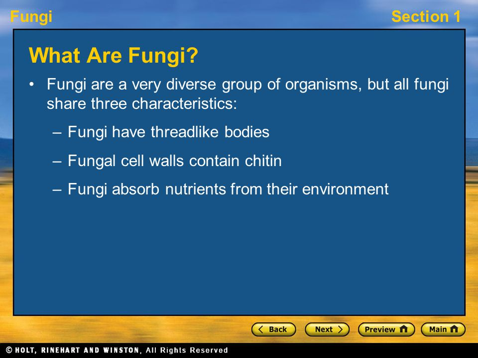 What Are Fungi Fungi are a very diverse group of organisms, but all fungi share three characteristics: