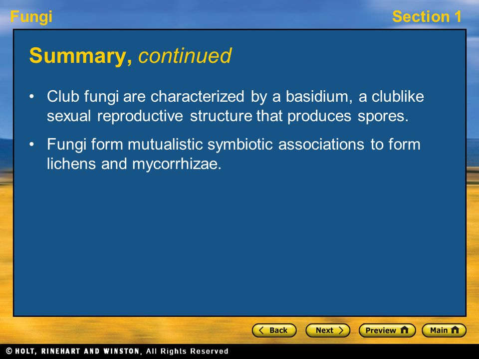 Summary, continued Club fungi are characterized by a basidium, a clublike sexual reproductive structure that produces spores.