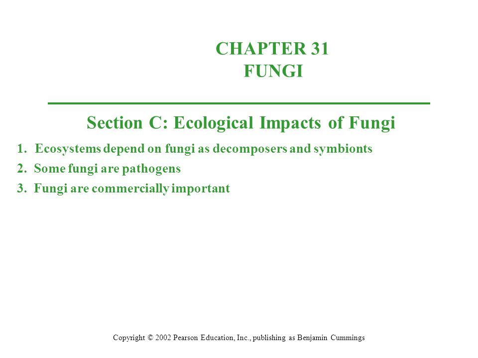 Section C: Ecological Impacts of Fungi