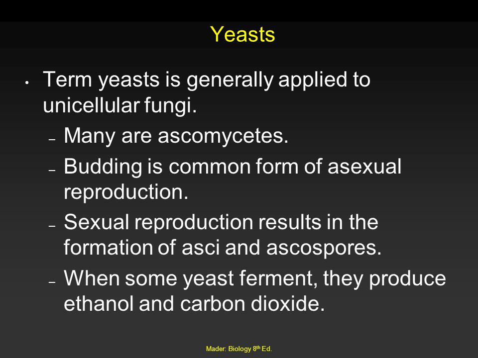 Term yeasts is generally applied to unicellular fungi.