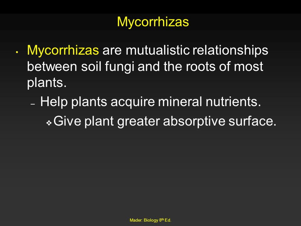 Help plants acquire mineral nutrients.
