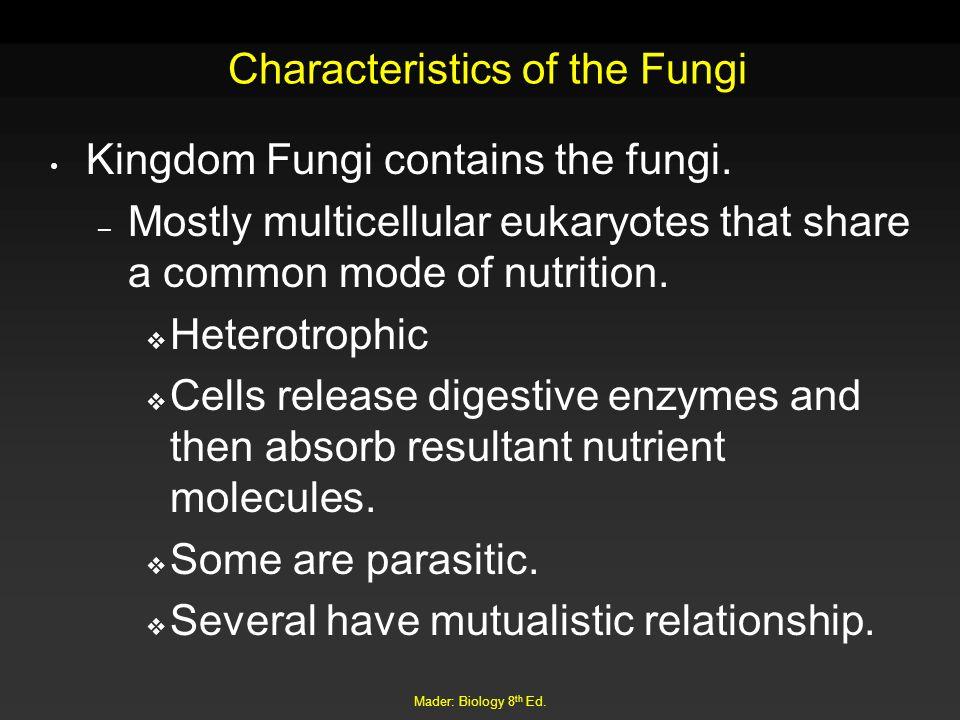 Characteristics of the Fungi