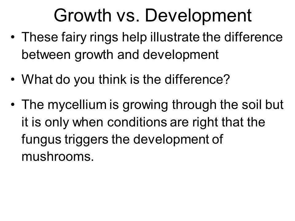 Growth vs. Development These fairy rings help illustrate the difference between growth and development.